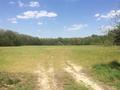 CALLEGARY FARM PROPERTY FRONT VIEW FACING EAST TOWARDS TILLABLE AREA