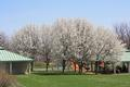 Tudek Park