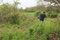 Township Arborist Lance King