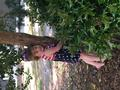 Park Tree Hugger Photo