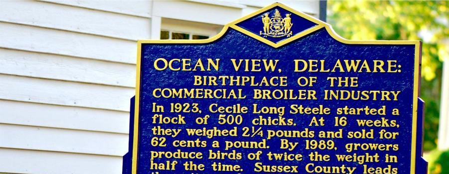Ocean View has a rich history...