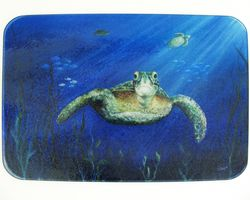 Turtle Home Decor Image