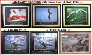 Plexiglass vs. Lamanart Image