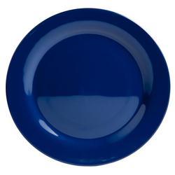 "12"" Platter - Blue"