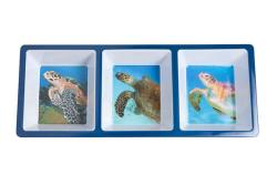 Sea Turtle Appetizer Tray