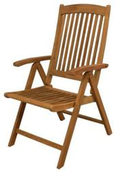 Avalon Folding Multi-Position Deck Chair with Arms