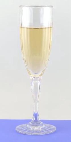 Acrylic Fluted Champagne