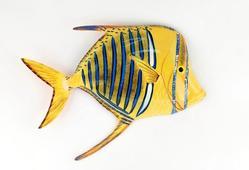 Yellow Lookdown Fish