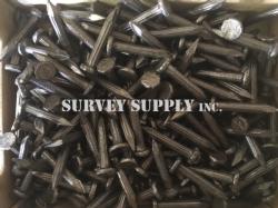 """Fluted Masonry Nails - 1"""" (1 lb. box)"""