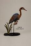 Reddish Egret, Decoy