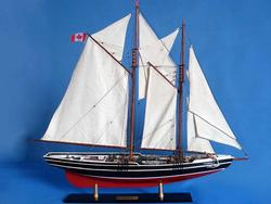 Bluenose Limited 32""