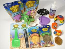 Hermit Crab Deluxe Kit with 2 x Crab