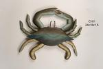 Blue Crab Medium