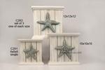 Planter Starfish Boxes