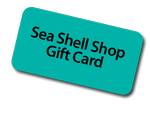 Sea Shell Shop Gift Cards