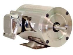 2 HP WEG 3600 RPM 145TC Stainless Steel Motor