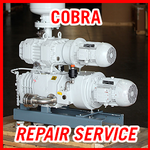 BUSCH COBRA Dry Vacuum Pumps - REPAIR SERVICE
