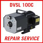 ANEST IWATA DVSL 100C - REPAIR SERVICE