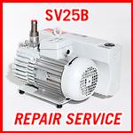 Leybold SV25B - REPAIR SERVICE
