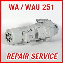 Leybold WA / WAU 251 - REPAIR SERVICE
