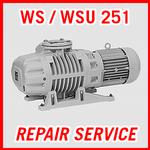 Leybold WS / WSU 251 - REPAIR SERVICE
