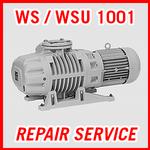 Leybold WS / WSU 1001 - REPAIR SERVICE