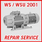 Leybold WS / WSU 2001 - REPAIR SERVICE