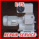 Leybold E 75 - REPAIR SERVICE