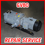 Edwards GV80 - REPAIR SERVICE