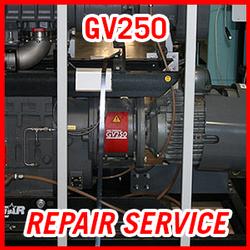 Edwards GV250 - REPAIR SERVICE