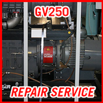Edwards GV250 - REPAIR SERVICE
