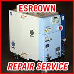 EBARA ESR80WN - REPAIR SERVICE