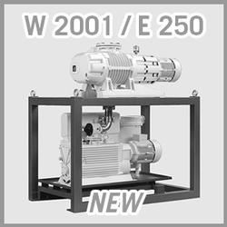 Leybold RUTA W 2001 / E 250 Vacuum Pump System - NEW