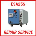 EBARA ESA25S - REPAIR SERVICE