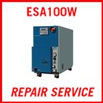 EBARA ESA100W - REPAIR SERVICE