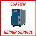 EBARA ESA70W - REPAIR SERVICE