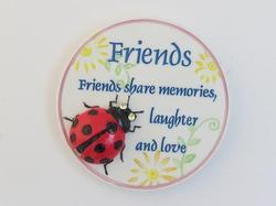 Friends Ladybug Magnet