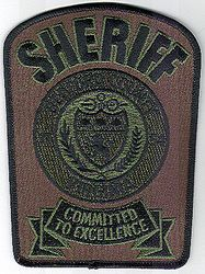 Sheriff: VA, Bedford Co. SWAT Sheriff Patch (green/black)
