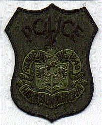 Harrisonburg SWAT Police Patch (VA)