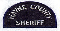 Sheriff: MI, Wayne Co. Sheriff Patch (blue)