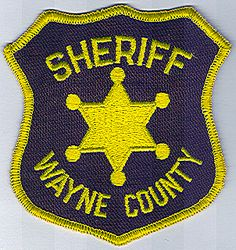 Sheriff: IL, Wayne Co. Sheriffs Dept. Patch