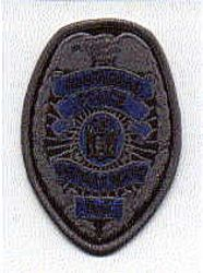 Allendale SWAT Police Patch (badge patch) (NJ)
