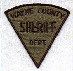 Sheriff: NC, Wayne Co. Sheriffs Dept. Patch (green triangular)