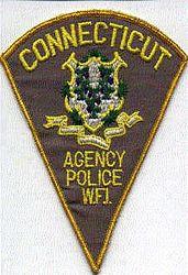 W.F.I. Agency Police Patch (CT)