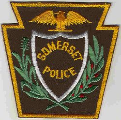 Somerset Police Patch (PA)