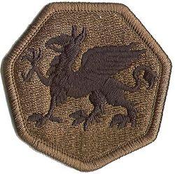 108th AIRBORNE DIVISION, SUBDUED
