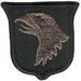 101st INFANTRY DIVISION (ABN)-(ACU)