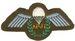 Unissued Assistant Parachute Jump Instructors Wing On OD Felt - 1960's - Current