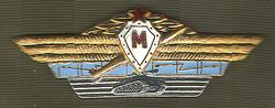 Combined Arms Specialist Badge - Master