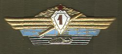 Combined Arms Specialist Badge - First Class
